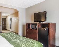 Hotel Comfort Inn Demopolis