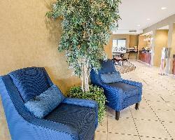 Hotel Comfort Suites Speedway - Kansas City
