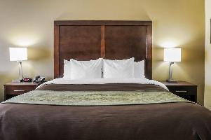 Hotel Comfort Inn & Suites Artesia