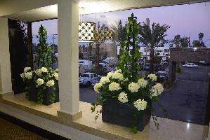 Hotel Best Western Posada Del Rio