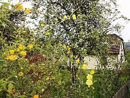 33559) Casa En Schladming Con Aparcamiento, Terraza, Jardín