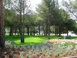 61661) Apartamento En El Centro De Nin Con Piscina, Aire Acondicionado