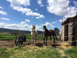 52659) Cortijo En Fonollosa Con Piscina, Terraza, Jardín, Lavadora