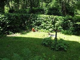 44935) Apartamento En Horn-bad Meinberg Con Jardín