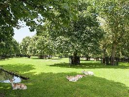 646183) Casa En El Centro De Bergen Con Aparcamiento, Terraza, Jardín