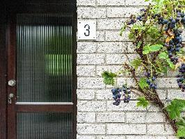 70315) Casa A 1.2 Km Del Centro De Kamperland Con Terraza, Jardín