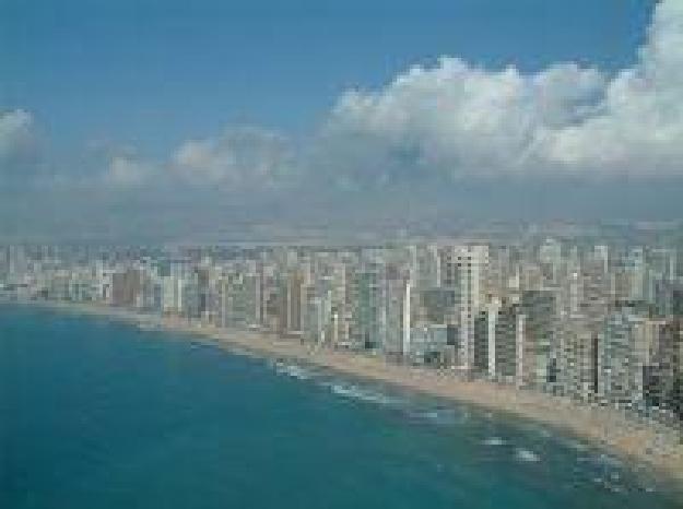 Hoteles benidorm 178 hoteles baratos en benidorm for Hoteles familiares en benidorm